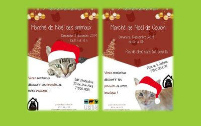 Le 8 décembre nous sommes présents sur 2 marchés de Noël : Niort et Coulon